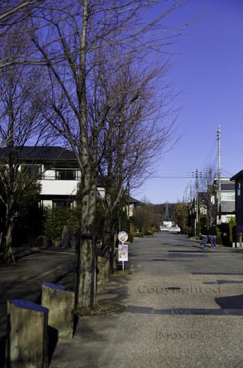 20120113001.jpg