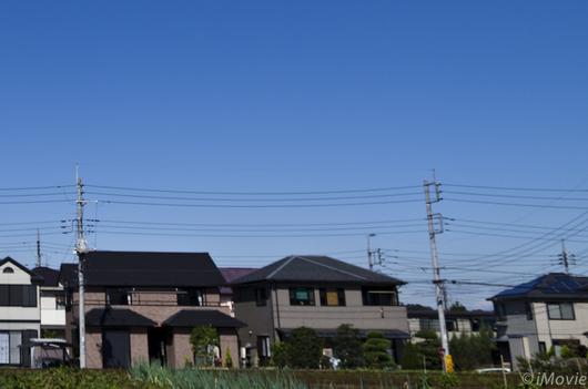K5__3598-3.jpg